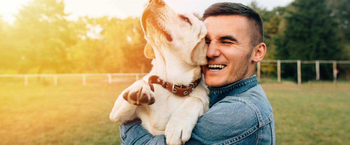 Köpek Beslemenin Faydaları: İyi Hissetmenin Tüylü ve Sevimli Bir Yolu