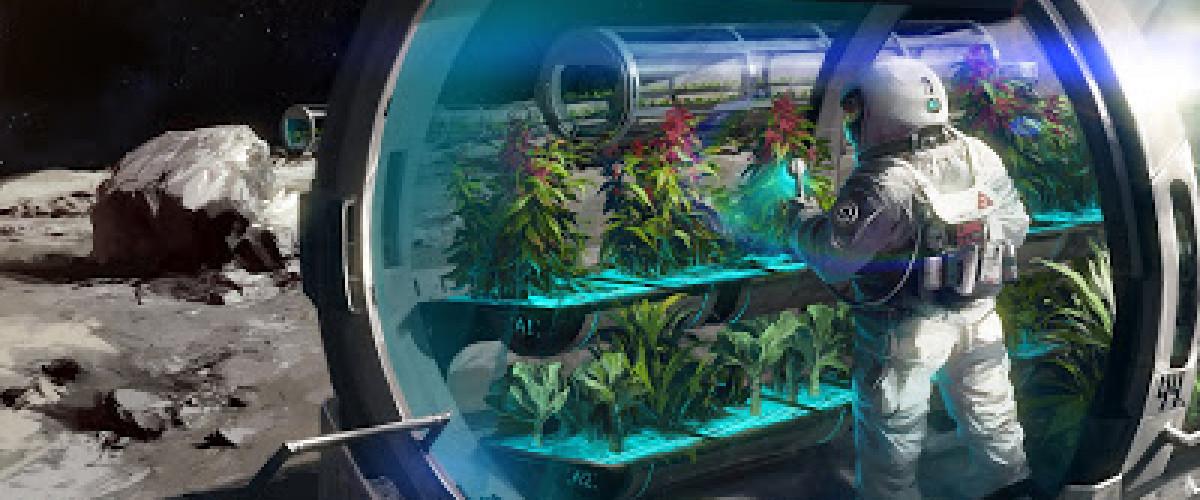 Uzayda Yetişmiş Bir Marul Yemeye Ne Dersiniz?